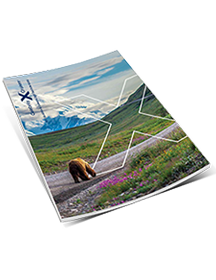 2017 Cruisetours Brochure